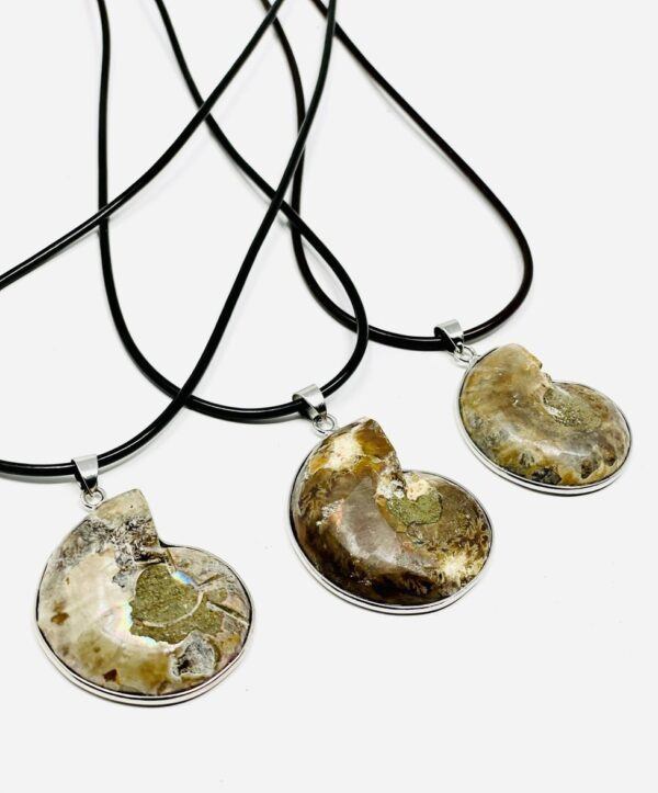 Ammonite_Fossil_Necklace_BACK_82
